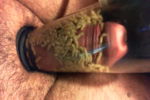 Penis pumping with maggots
